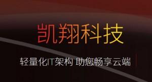 中国存储力量第八期:凯翔信息,两条腿走路